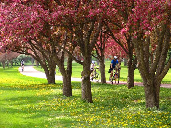 Minnesota - Mpls. Bike Path Spring 3 LR