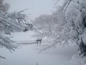 snow_mn_may0213