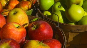 fall-apples